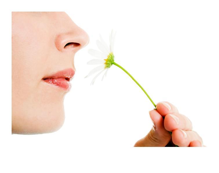 Z garbem, za szeroki, zbyt płaski, słowem ? do poprawki. Jak nieoperacyjnie zmienić swój nos?
