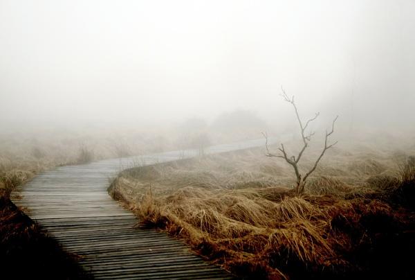 """Jesienna depresja? 5 rzeczy, których nie wiedzieliście o """"jesiennej depresji"""""""