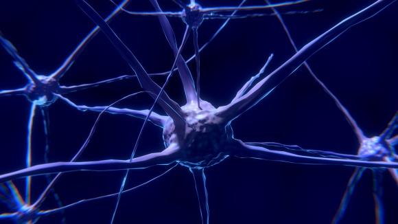 Nowa, przełomowa terapia w leczeniu stwardnienia rozsianego BIZNES, Farmacja - Stwardnienie rozsiane (SM) to choroba o wielu obliczach – u każdego może przebiegać inaczej, ma również kilka odmiennych postaci.